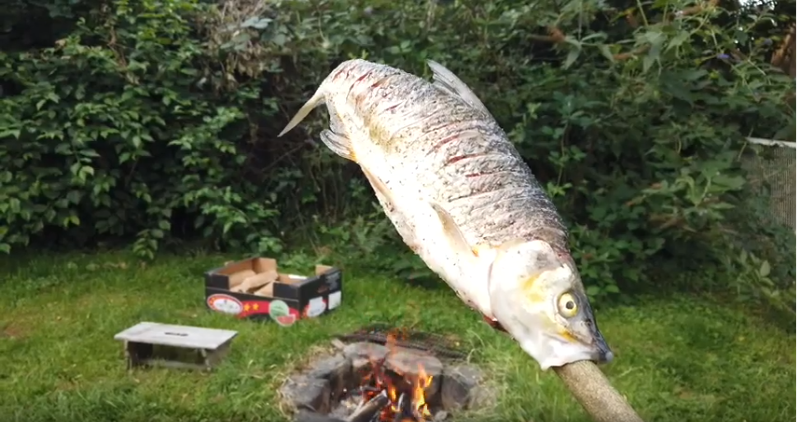Steckerlfisch aus Russnase (Mit Video, Feinripp Cut)
