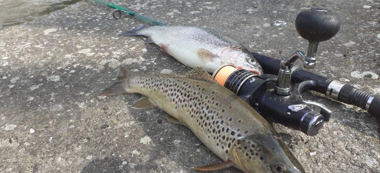Fischereisaison wird bis zum Ende des Lockdowns verlängert